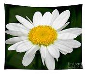 Single Daisy Tapestry