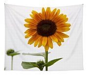 Single Sunflower Tapestry