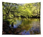 Sitting By The Creek  Tapestry