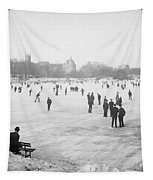 Skating In Central Park Tapestry by Anonymous