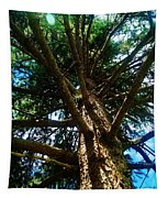 Skyward Spruce Tapestry