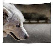 Sled Dog Tapestry