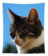 Sleeping In The Sun Tapestry