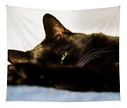 Sleeping With One Eye Open Tapestry