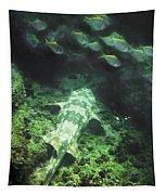 Sleeping Wobbegong And School Of Fish Tapestry