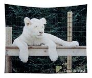 Sleepy Tapestry