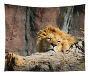 Sleepy Lion Tapestry