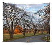 Sloan Park Sunset Tapestry