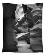 Slot Canyon 2 Tapestry