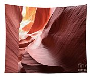 Slot Canyon Color Blend Tapestry