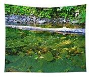 Slow Moving Sream Tapestry