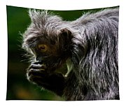 Small Monkey Eating Tapestry
