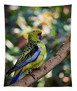 Small Parrot Tapestry