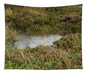 Small Pond Tapestry