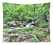Smith Creek Downstream Of Anna Ruby Falls - 2 Tapestry