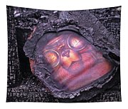 Smokey Bear All Burned Tapestry