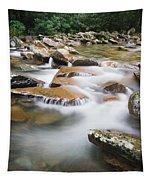 Smokey Mountain Creek Tapestry