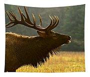 Smoky Mountain Bugle Tapestry