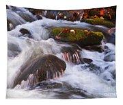 Smoky Mtn Stream - 429 Tapestry