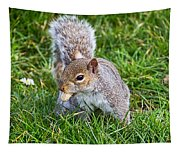 Snack Time For Squirrels Tapestry