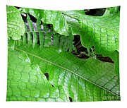 Snake Skin Plant Tapestry