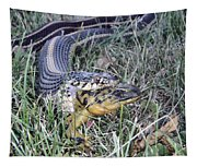 Snake With Legs Tapestry