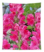 Snapdragons Tapestry