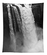 Snoqualmie Falls - Black And White Tapestry