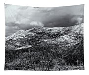 Snow Capped 45 Tapestry