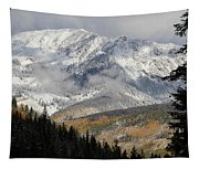 Snow Capped Beauty Tapestry
