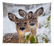 Snow Does Tapestry