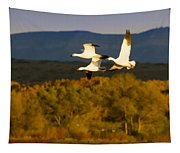 Snow Geese Flying In Fall Tapestry