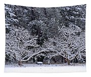 Snow In The Valley Tapestry