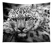 Snow Leopard In Black And White Tapestry