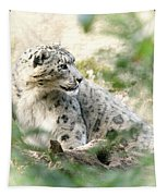 Snow Leopard Pose Tapestry