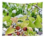 Snow On Green Leaves With Red Berries Tapestry