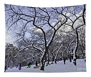Snowboarders In Central Park Tapestry