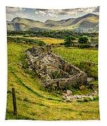 Snowdon Ruin Tapestry