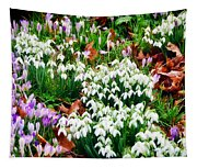 Snowdrops And Crocuses Tapestry