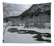 Snowed Under Valley Tapestry
