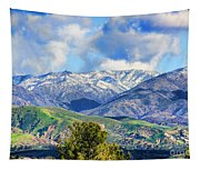 Snowing In Orange County Tapestry