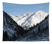 Snowwhite Mountain Top Tapestry