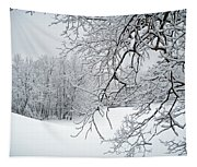 Snowy Branches Tapestry