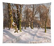 Snowy Forest Road In Sunlight Tapestry
