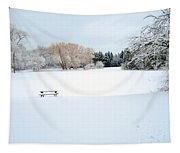 Snowy Lagoon Tapestry