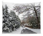 Snowy Lane Tapestry