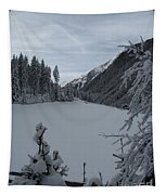 Snowy Meadow Tapestry