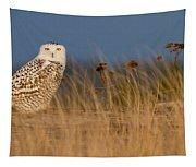 Snowy Owl Morning Tapestry