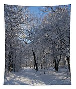 Snowy Trail Tapestry