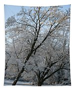 Snowcovered Trees Tapestry